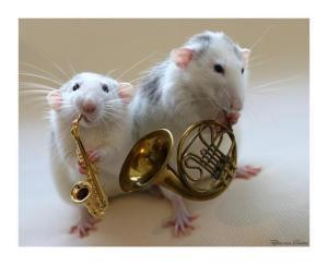 ratones_tocando_musica